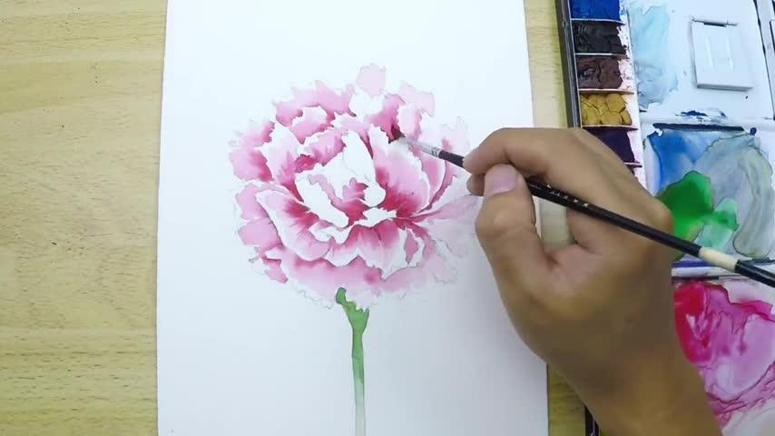 水彩画视频教程:如何画逼真的康乃馨?