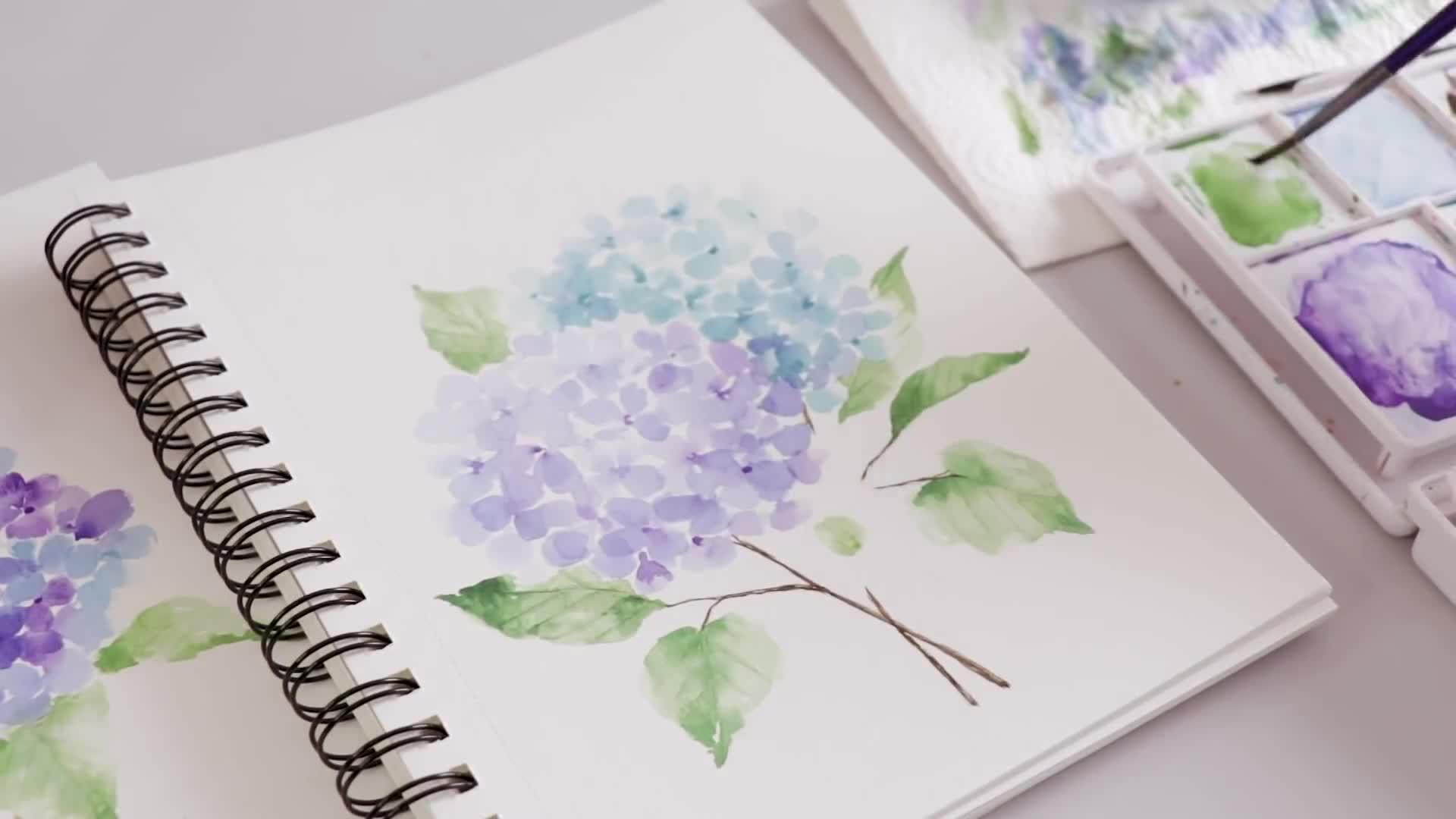 水彩画视频教程:如何画水彩绣球花?
