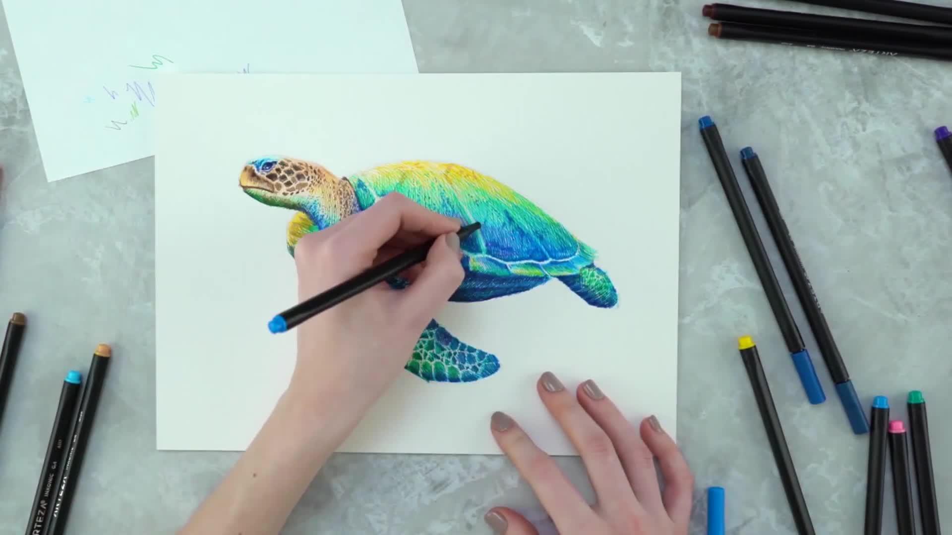 DIY马克笔手绘视频教程:手绘活灵活现的海龟先生