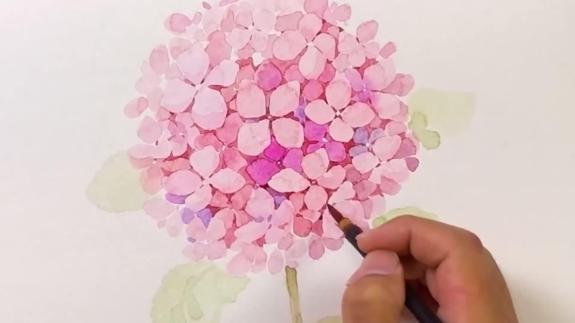 绘画视频教程:手绘梦幻而逼真的绣球花